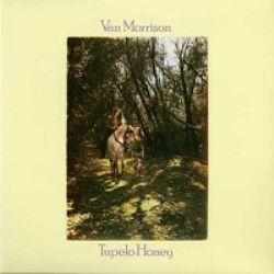 vinyl_pop_vanmorrison_3136