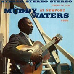 vinyl_blues_muddyW1449